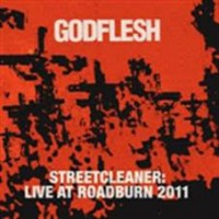 Godflesh - Live At Roadburn 2011 (2lp)
