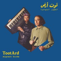 Tooatard - Migrant Birds
