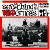 Various - Searching In The Wilderness