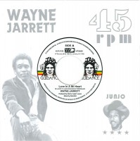 Jarret, Wayne/roots Radics - Love In My Heart/blood On His Lips