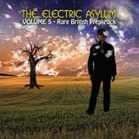 Various - Electric Asylum Vol.5