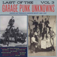 Various - Last Of The Garage Punk Unknowns Vol.3