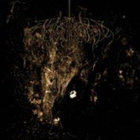 Wolves In The Throne Room - Two Hunters (2lp)