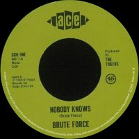 Brute Force - Nobody Knows/king Of Fuh