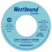 Funkadelic - Can't Shake It Loose/ I'll Bet You