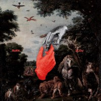 Liebing, Chris - Burn Slow (2lp)
