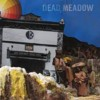 Portada de DEAD MEADOW - THE NOTHING THEY NEED