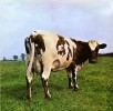 Portada de PINK FLOYD - ATOM HEART MOTHER