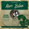 Bolan, Marc - Misfortune Gatehouse. Home Demos Volume 4