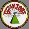 13th Floor Elevators - You're Gonna Miss Me (picture)